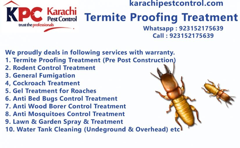 Termite Proofing, Termite control with guaranteed, Fumigation Services in karachi