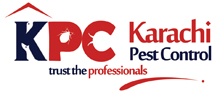 Best Fumigation in karachi termite proofing, rodent and critters treatment, lawn insects